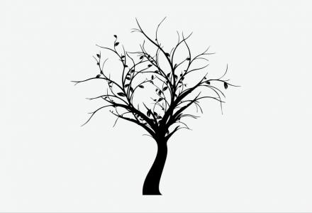 Merkle Trees: Understanding Blockchain's Organizational System