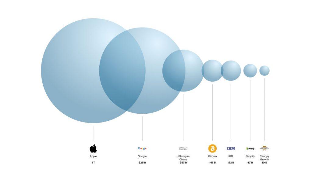 Bitcoin Market Cap  Apple Market Cap  Google Market Cap  IBM Market Cap JP Morgan Market Cap  Canopy Growth Market Cap  Shopify Market Cap